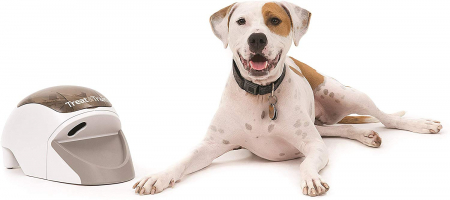 "PetSafe – לאלף את הכלב בקלות! רק £78.98 / 354 ש""ח (הכי זול אי פעם!)"